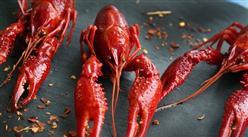 小龙虾价格跳水高达35% 2019年小龙虾市场生产量及前景如何?(附图表)