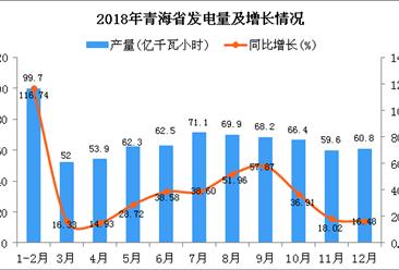 2018年青海省发电量及增长情况分析:同比增长38.94%