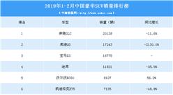 2019年1-2月豪华SUV销量排行榜