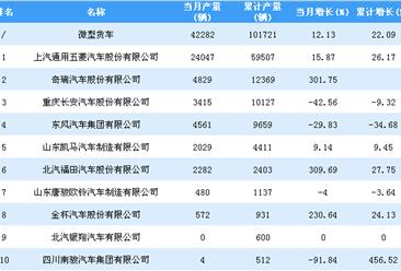 2019年1-2月微型货车企业产量排行榜TOP10