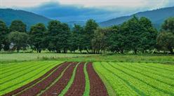 廣東省第一批鄉村旅游開發資源目錄(河源篇):共357個項目(附完整目錄)