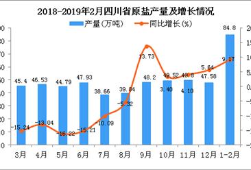 2019年1-2月四川省原盐产量为84.8万吨 同比增长9.17%