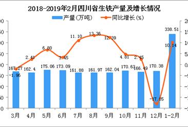 2019年1-2月四川省生铁产量为338.51万吨 同比增长10.14%