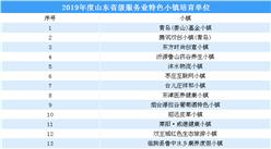 第三批国家级特色小镇申报:2019年山东省级服务业特色小镇培育单位名单(附表)