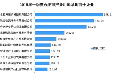 产业地产投资情报:2019年一季度安徽省合肥市产业用地拿地企业30强排行榜