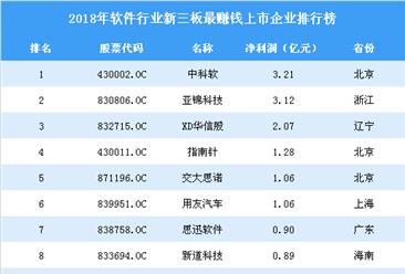 2019年新三板软件行业最赚钱企业排行榜top100