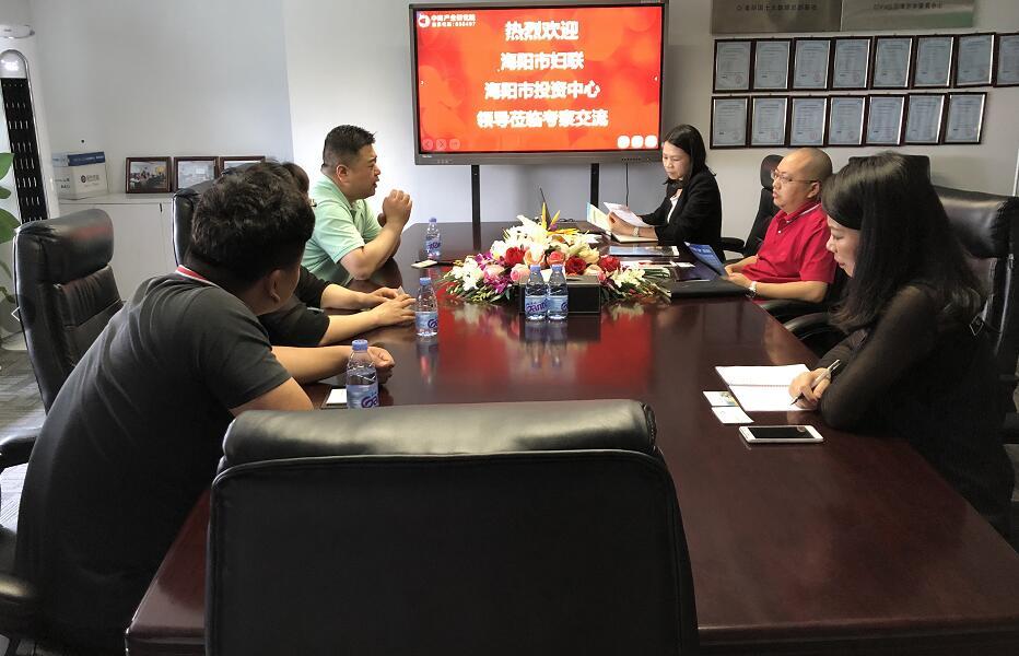 山东海阳市投促领导莅临中商产业研究院考察洽谈
