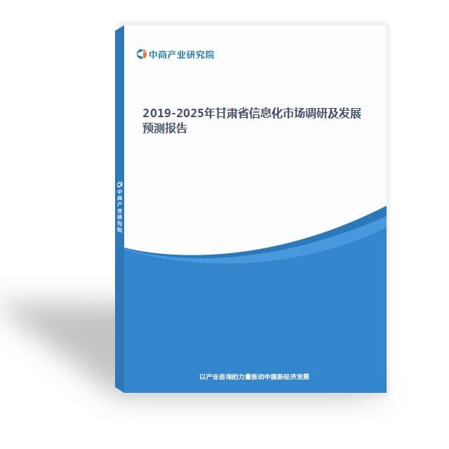 2019-2025年甘肃省信息化市场调研及发展预测报告