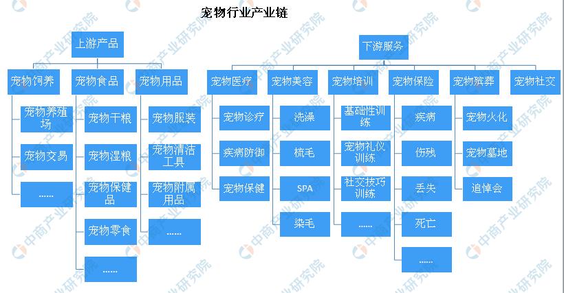 广州头条网_女子将遗产留给狗 宠物行业市场前景如何?(附财产链)
