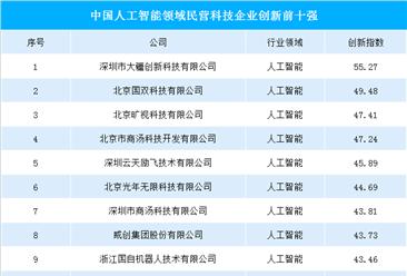 中國人工智能領域民營科技企業創新前十強:大疆/曠視/商湯榜上有名