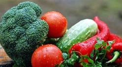 2019年5月蔬菜市場供需形勢及后市預測:蔬價季節性加速下行