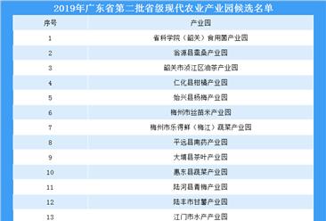 2019年广东省第二批省级现代农业产业园候选名单(附完整名单)