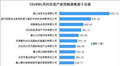 产业地产投资情报:2019年5月河北省产业用地拿地企业100强排行榜