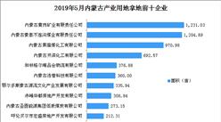產業地產投資情報:2019年5月內蒙古產業用地拿地企業100強排行榜