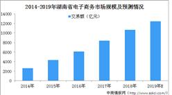 2019年湖南省电子商务行业市场现状分析及未来发展趋势预测(附图表)