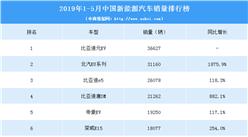 2019年1-5月中國新能源汽車銷量排行榜