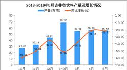 2019年1-5月吉林省饮料产量为237.89万吨 同比下降35.9%