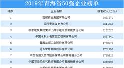 2019年青海省企业50强排行榜