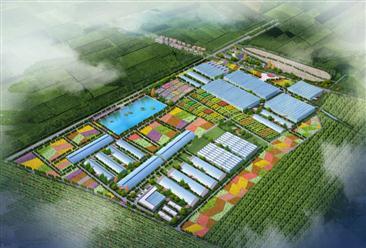 """安徽滁州定远县""""九梓天香""""田园综合体项目案例"""