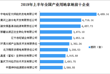产业地产投资情报:2019年上半年全国产业用地拿地企业100强排行榜