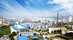 湖南岳陽綠色化工產業園項目案例