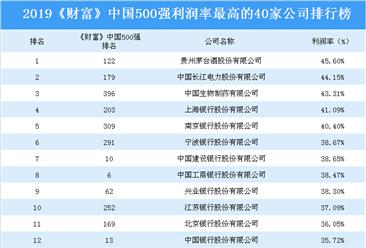 2019《财富》中国500强利润率最高的40家公司排行榜