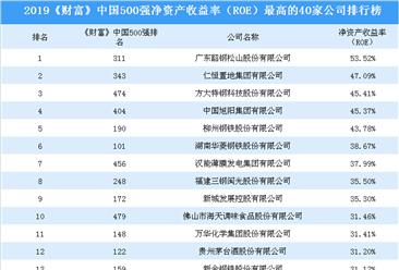 2019《财富》中国500强净资产收益率最高的40家公司排名:广东韶钢松山蝉联榜首