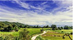 首批全国乡村旅游重点村名单出炉:浙江14个村上榜(附全名单)