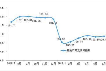 2019年1-6月全国房地产开发经营和销售情况(附图表)