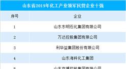 2019年山东省化工产业领军民营企业十强榜(附完整榜单)