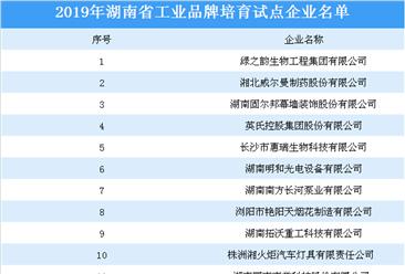 2019年湖南省工业品牌培育试点企业名单 :绿之韵集团等50家企业上榜(附详细名单)