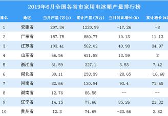 2019年6月全国各省市家用电冰箱产量排行榜TOP10