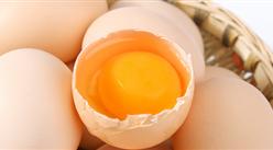 2019年7月禽蛋市场供需及价格预测分析:鸡蛋价格将稳中略涨