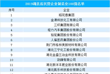 2019年湖北省民营企业制造业100强排行榜