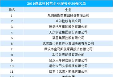 2019湖北省民营企业服务业20强排行榜(附榜单)
