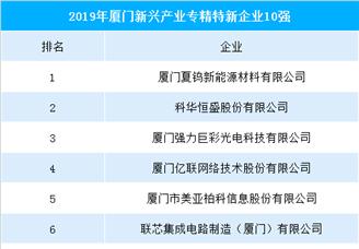 2019厦门新兴产业专精特新企业十强排行榜