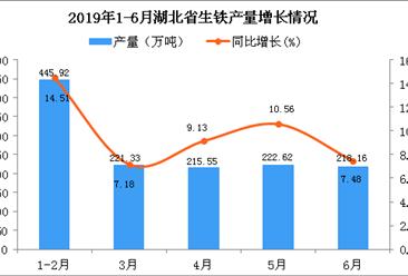 2019年上半年湖北省生铁产量同比增长10.5%