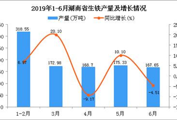2019年上半年湖南省生铁产量为1003.2万吨 同比增长7.73%