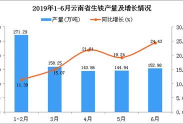 2019年上半年云南省生铁产量为871.31万吨 同比增长17.16%