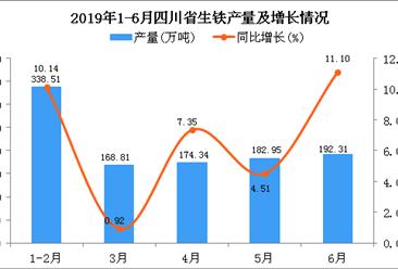 2019年上半年四川省生铁产量为1056.91万吨 同比增长7.28%