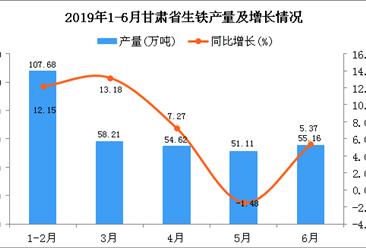 2019年上半年甘肃省生铁产量为332.24万吨 同比增长9.8%