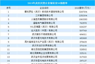 2019年武汉民营企业制造业50强排行榜(附榜单)