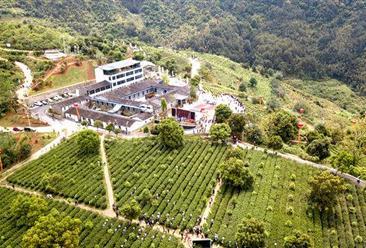 安溪国家现代茶叶产业园项目案例