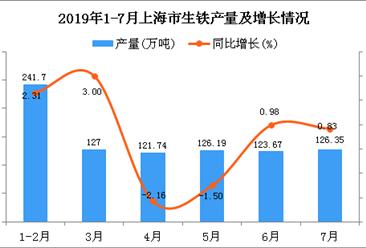 2019年1-7月上海市生铁产量为866.65万吨 同比增长0.79%