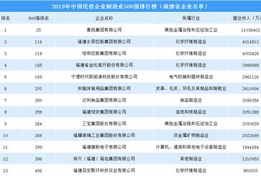 2019年中国民营企业制造业500强排行榜之福建企业篇