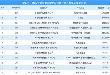 2019年中国民营企业制造业500强排行榜(安徽省上榜企业名单)