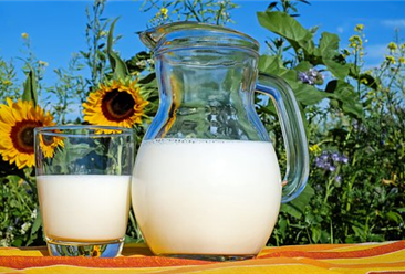 2019年8月牛奶市场价格及供需形势预测分析:国内奶价继续企稳回升