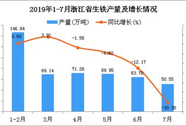 2019年1-7月浙江省生铁产量为471.53万吨 同比下降6.3%