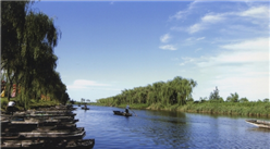 山东淄博市桓台县起凤马踏湖生态旅游小镇项目案例