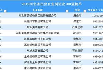 2019年河北省民营企业制造业100强榜单(全榜单)